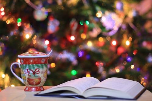 Un livre pour Noël